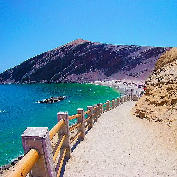 Playa La Mina - Paracas - Full Day